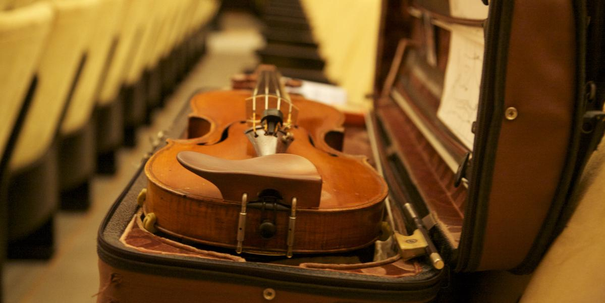 violin chin rest on violin in case